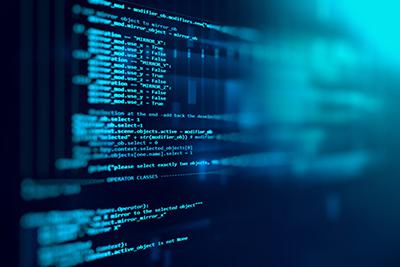 Coding + Development